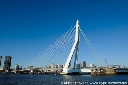 Wij zoeken Horecalocatie`s in grote regio Rotterdam!!!!