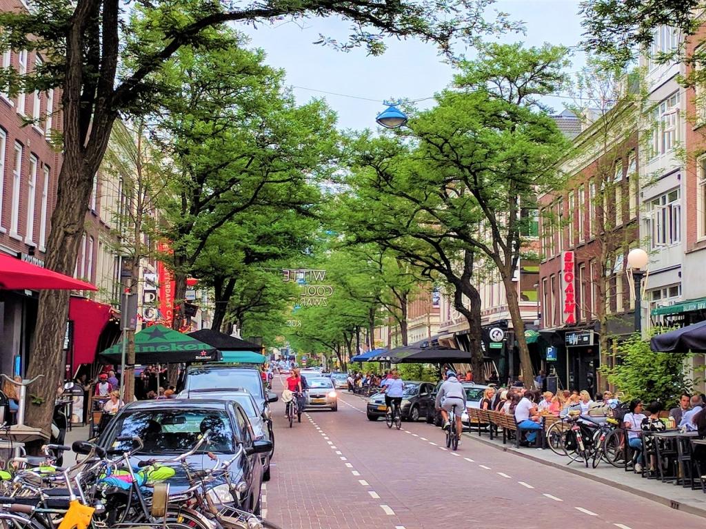 the-witte-de-withstraat - kopie.jpg
