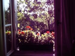 uitkijkje raam.JPG