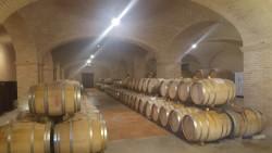 Wijnkelder.jpg